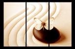 Obraz Motýl a kámen