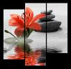 Obraz Lilie a kameny