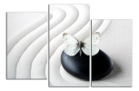 Obraz na plátne Motýl a kámen
