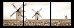 Obraz Mlýny
