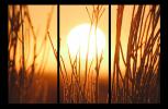 Obraz Západ slunce