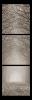 Obraz Alej stromů