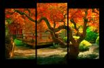 Obraz Japonská zahrada