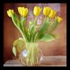 Obraz Tulipány ve váze