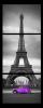 Obraz Eiffelovka a auto