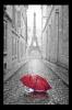 Obraz Eiffelovka a deštník