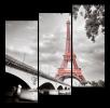 Obraz Eiffelovka a most
