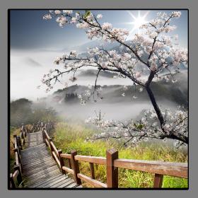 Obrazy feng shui 1014