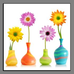 Obrazy harmonie květů 1045