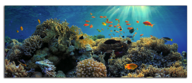 Obrazy moře 1079