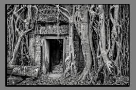Obrazy čistě černobílý 1146