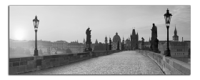 Obrazy čistě černobílý 1161