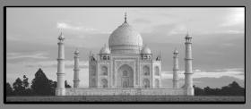 Obrazy čistě černobílý 1167