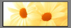 Obrazy květy 1210