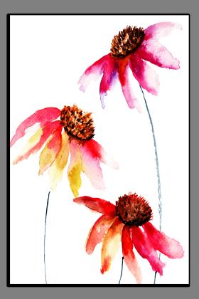 Obrazy různý květy 1296