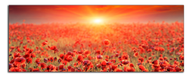 Obrazy západ slunce 1328