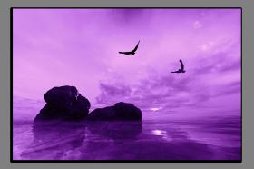 Obrazy pláže 2097
