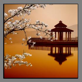 Obrazy feng shui 2213