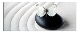 Obrazy čistě černobílý 2217