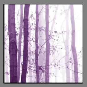 Obrazy stromy 2218