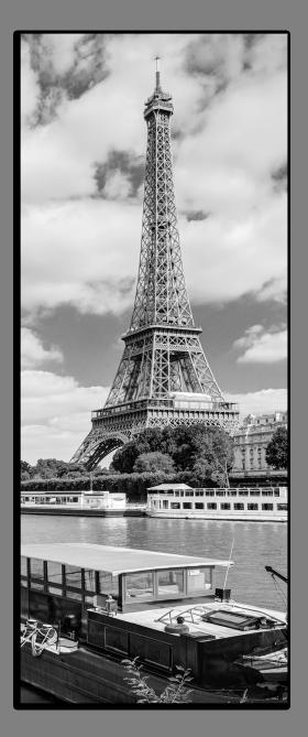 Obrazy čistě černobílý 2220