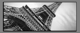 Obrazy čistě černobílý 2237