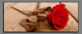 Obrazy romantika 2280