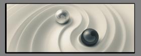 Obrazy čistě černobílý 2510