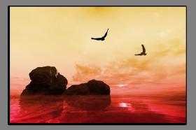 Obrazy moře 2545