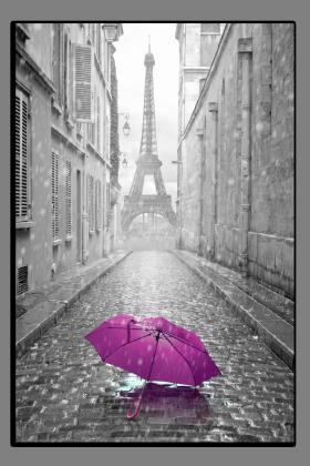 Obrazy Paříž 2568
