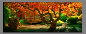 Obrazy stromy 2606