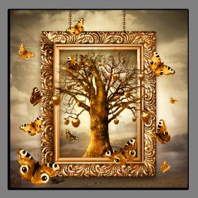 Obrazy stromy 2621