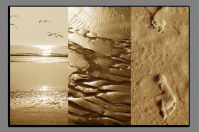 Obrazy pláže 2633