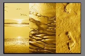 Obrazy pláže 2635
