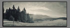 Obrazy čistě černobílý 2637