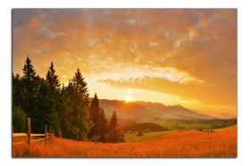 Obrazy hory 2642