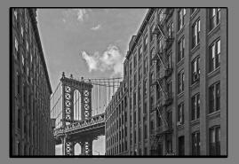 Obrazy čistě černobílý 2662