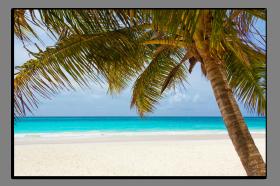 Obrazy pláže 2719