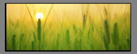 Obrazy západ slunce 2722