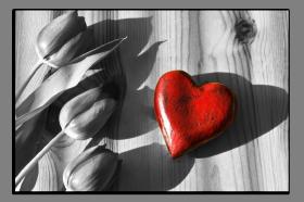 Obrazy srdce 2726