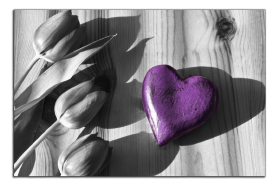 Obrazy srdce 2727