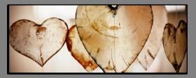 Obrazy srdce 2777