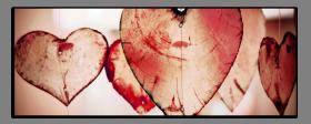 Obrazy srdce 2778