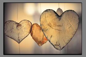 Obrazy srdce 2781