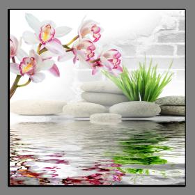 Obrazy orchidey 2806