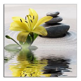 Obrazy zen kameny 2820