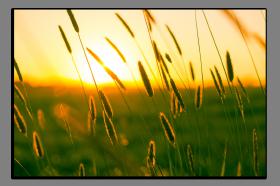Obrazy západ slunce 2822
