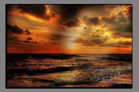 Obrazy moře 2823